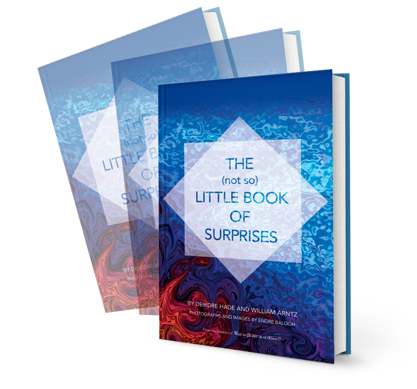 Inspirational Coffee Table Books.Book Of Surprises Deirdre Hade
